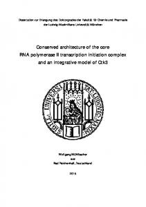 Conserved architecture of the core RNA polymerase II