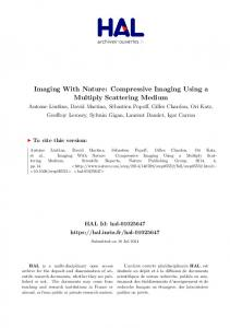 Imaging With Nature: Compressive Imaging Using a …
