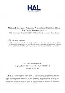 Optimal Design of Adaptive Normalized Matched Filter For